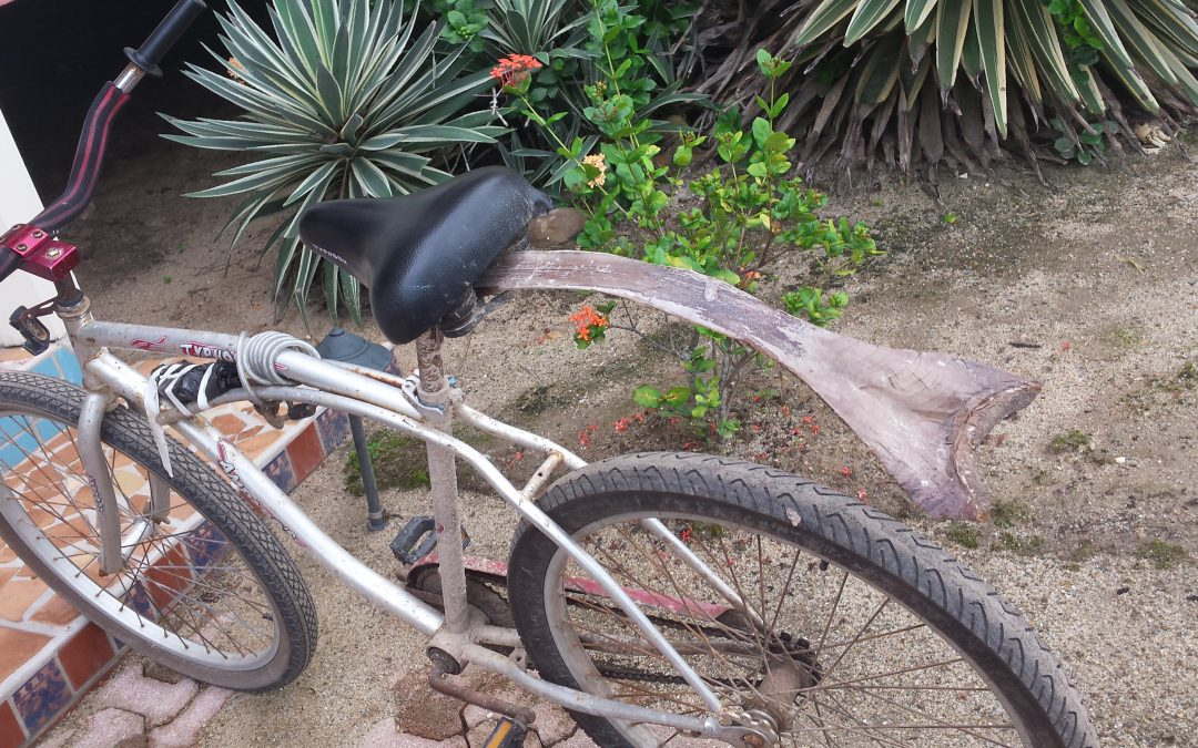 Biking Belize